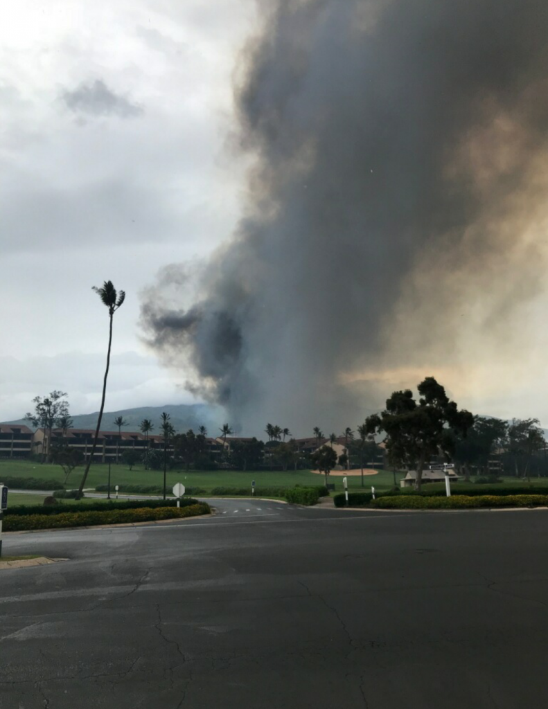 maui fire - photo #8