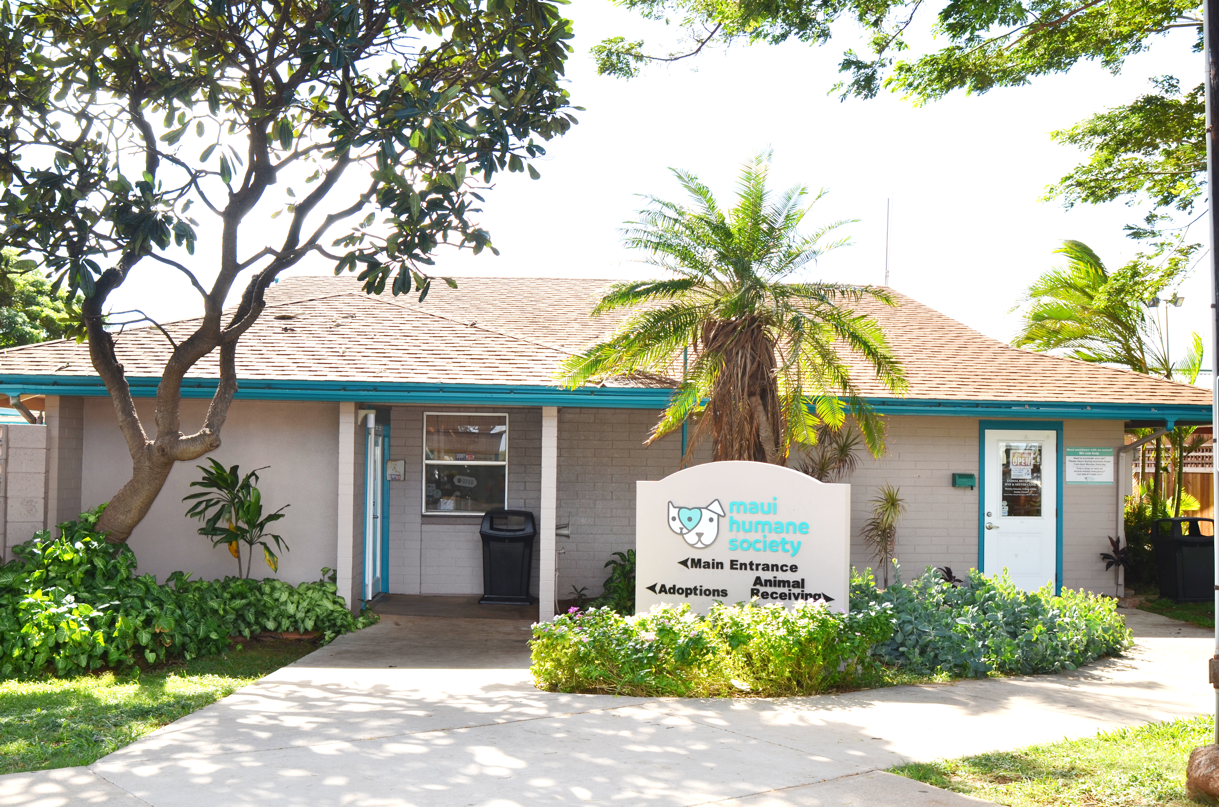 """Reduced Adoption Fees During Maui """"Empty the Shelter"""" Event, May 5-9"""
