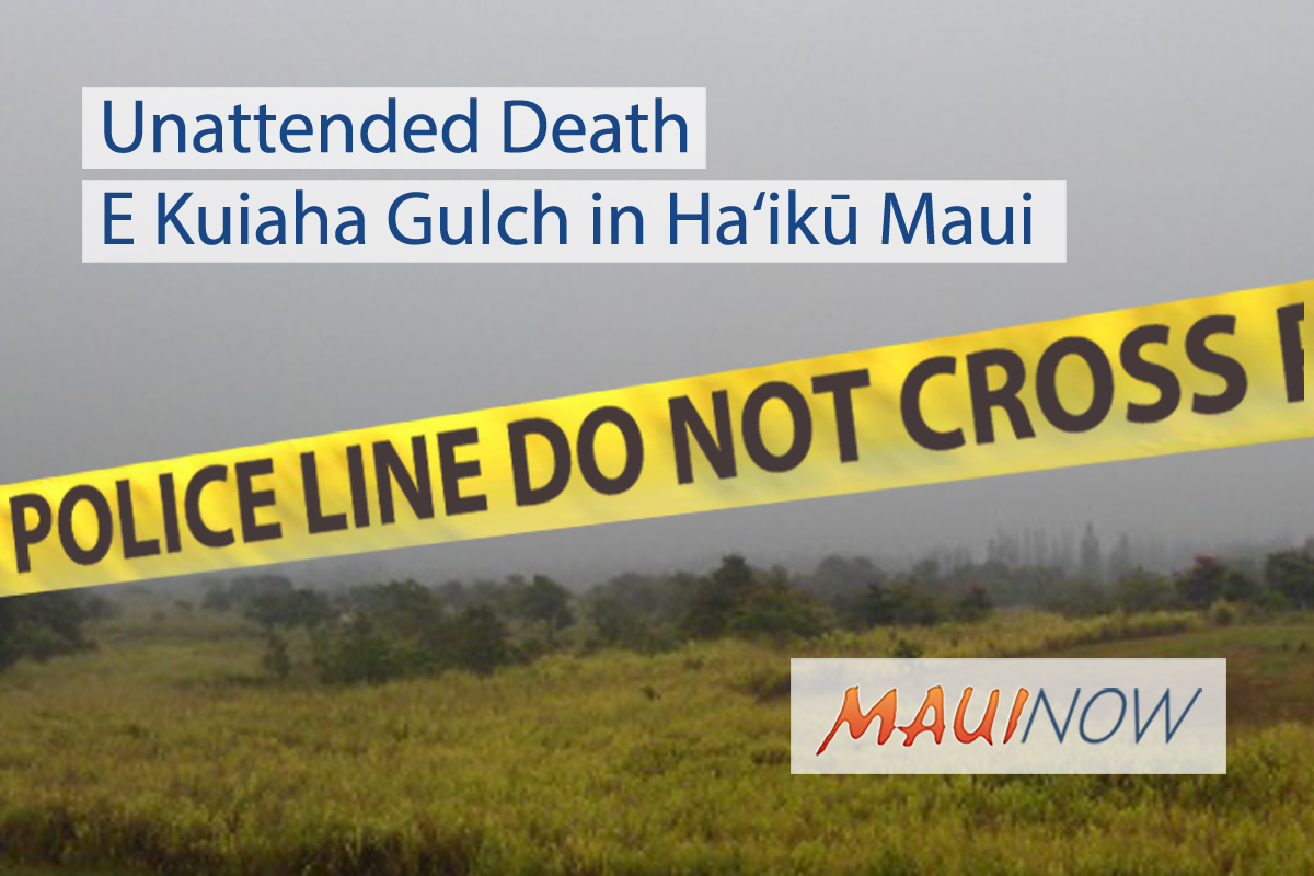 Body Recovered From E Kuiaha Gulch in Ha'ikū Maui