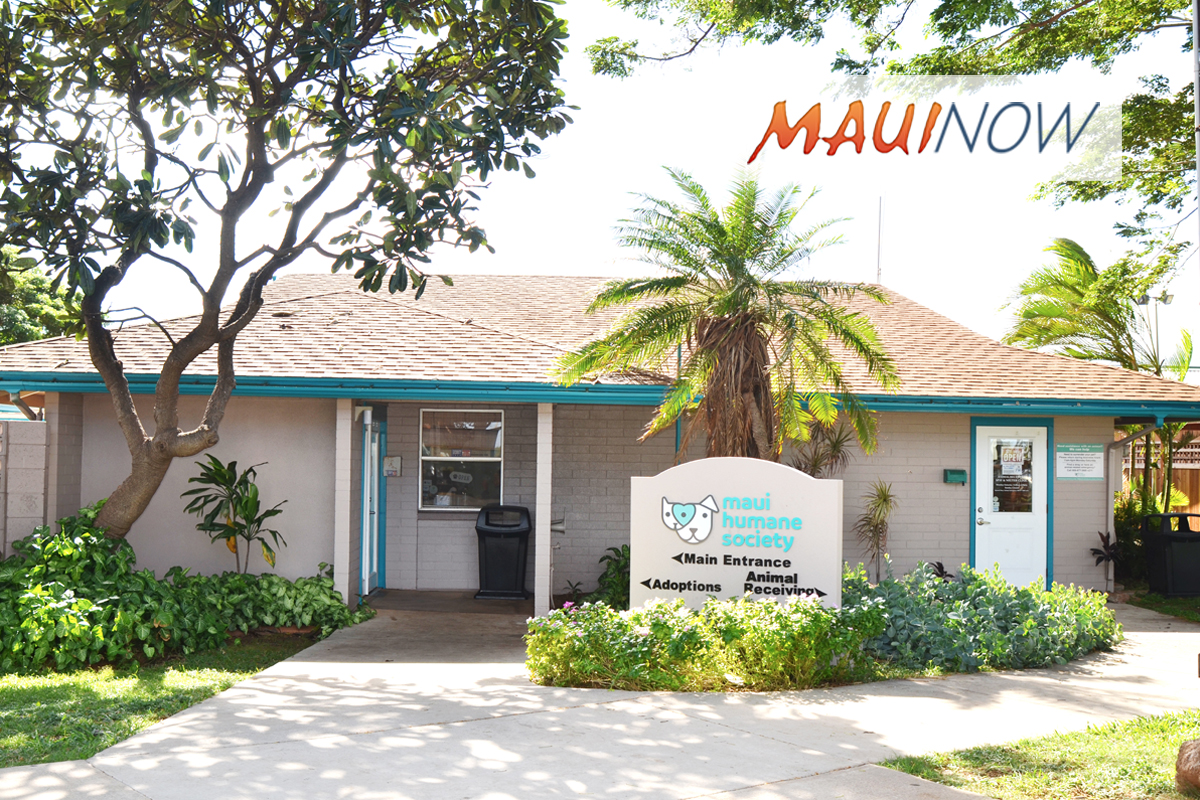 Maui Humane Society to Open 7 Days A Week