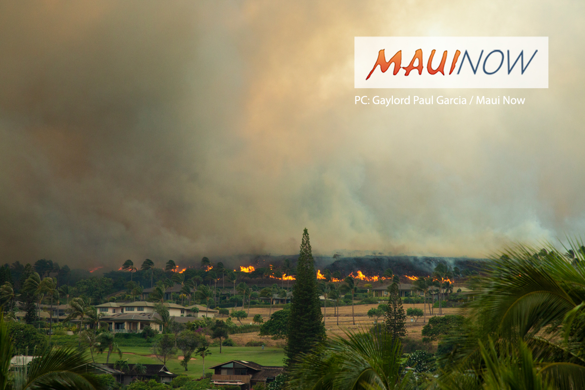 Maui Shelter Needs Being Assessed in Response to Brush Fires