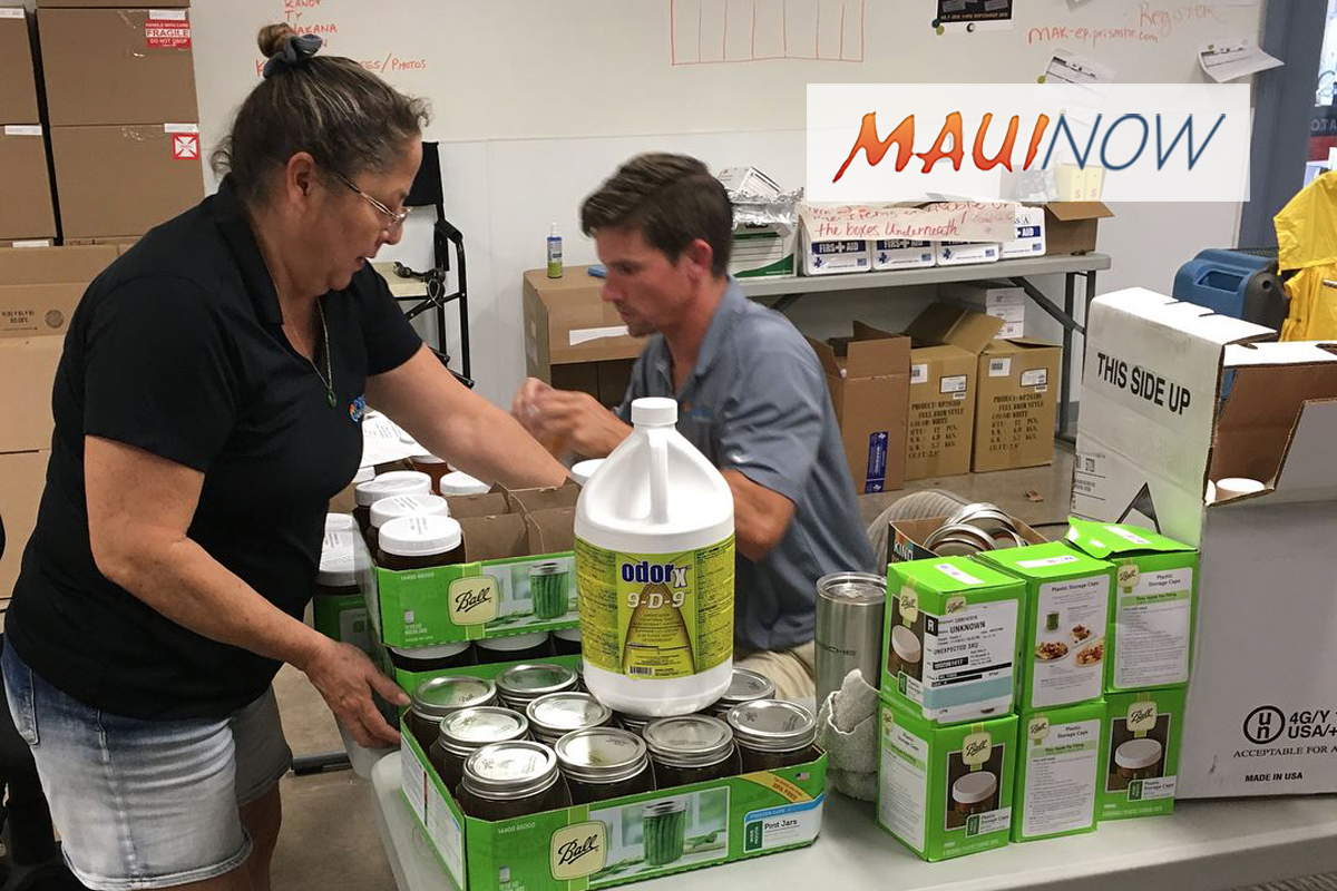 10 Tips on Home Recovery After West Maui Fires