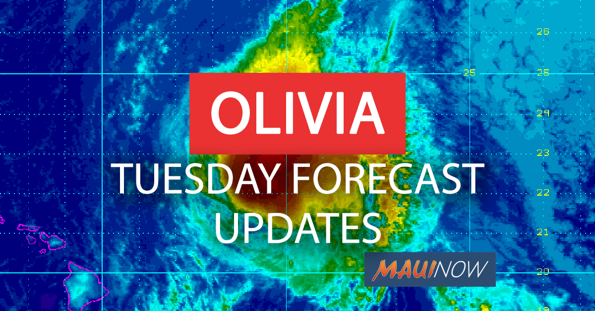 OLIVIA TUESDAY FORECAST UPDATES