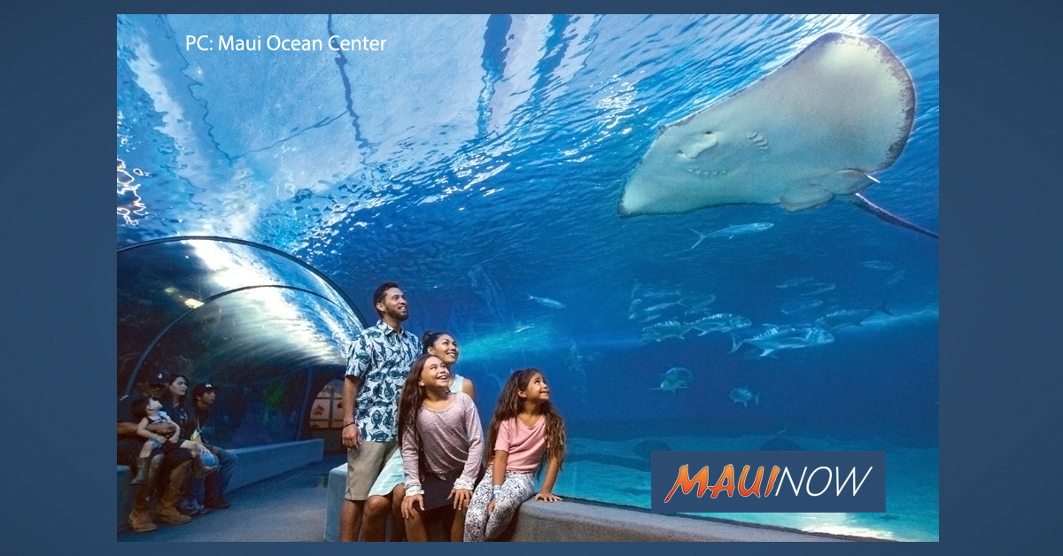 Maui Ocean Center Makes List of Top 10 World Aquariums