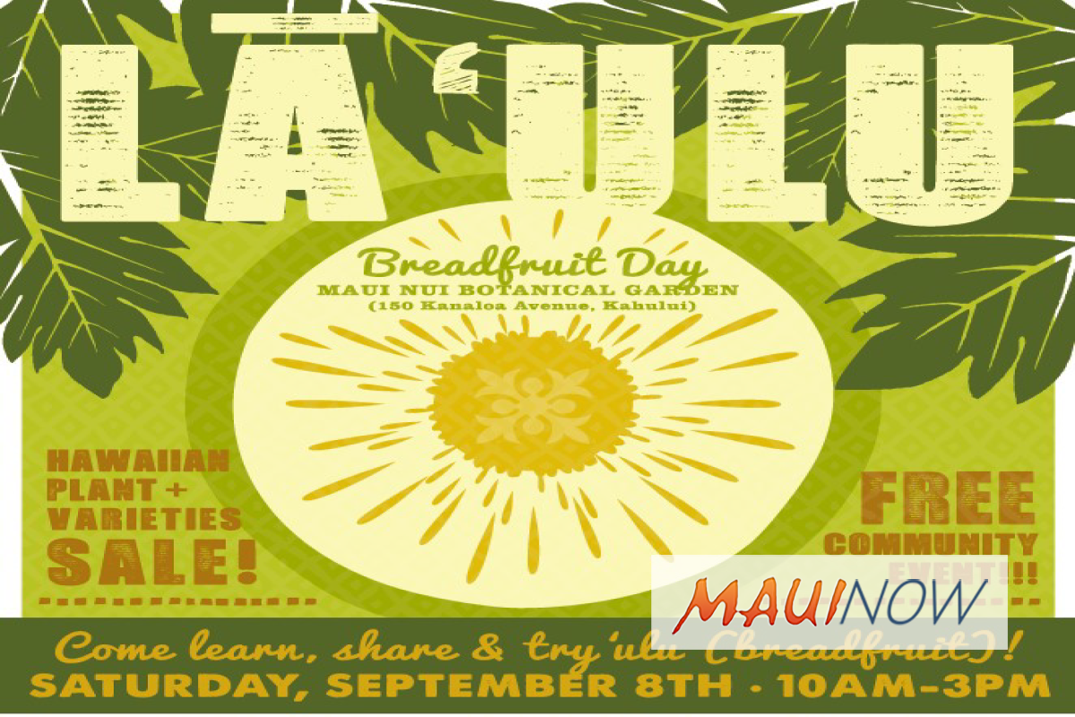 Maui Nui Botanical Gardens to Host Lā ʻUlu: Breadfruit Day