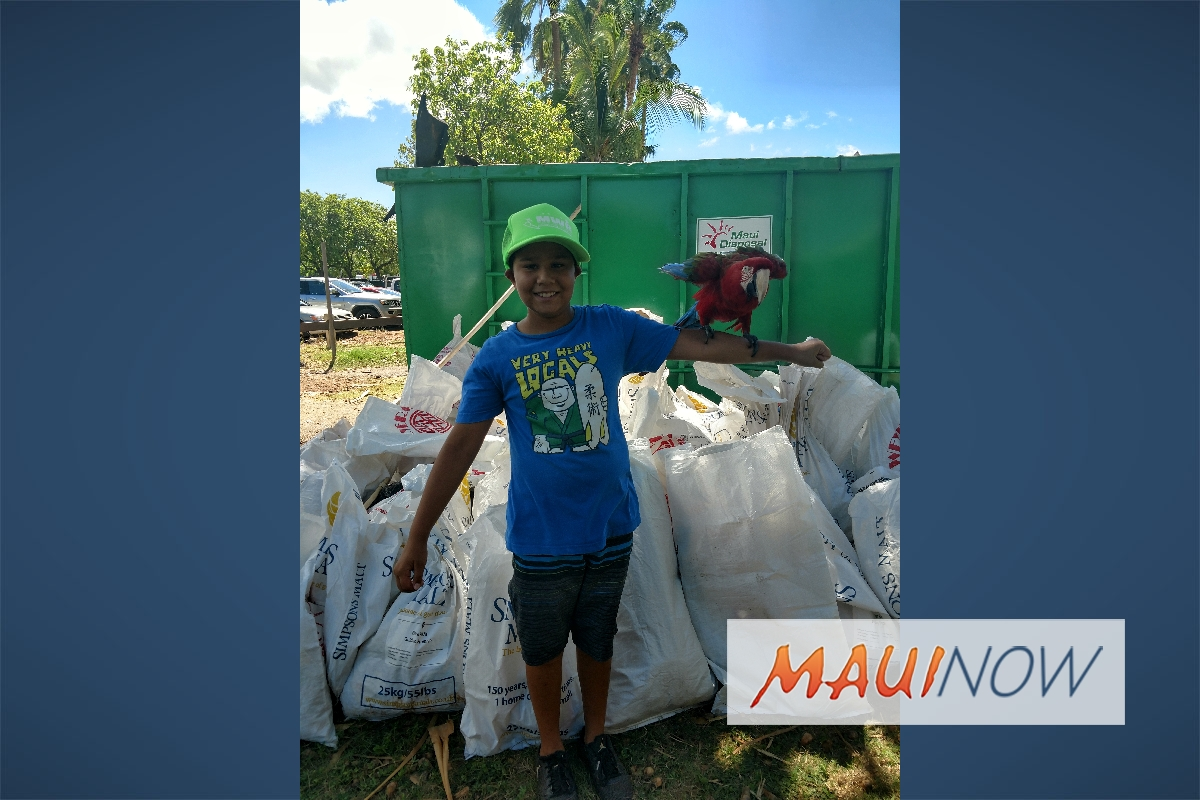 Volunteers Needed for Lahaina Town Clean Up