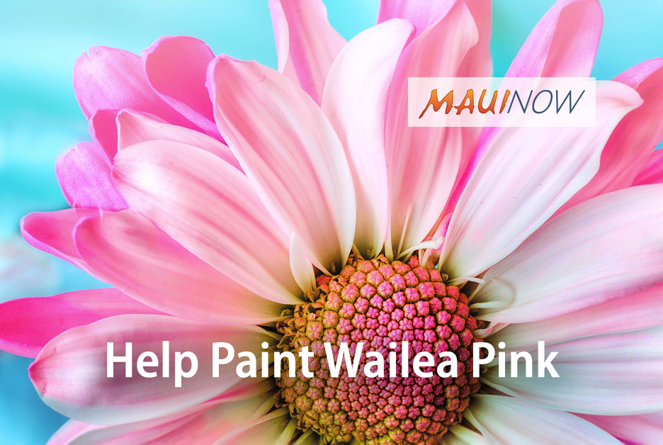 Help Paint Wailea Pink at Making Strides Against Breast Cancer Benefit