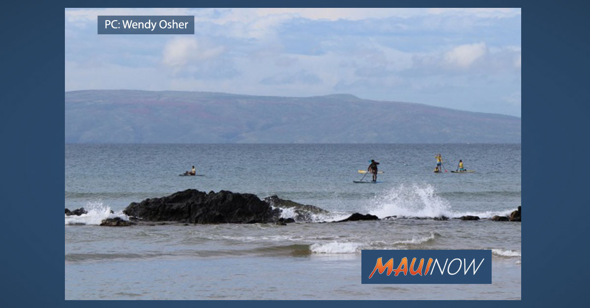 High Bacteria Count at Cove Park, Maui