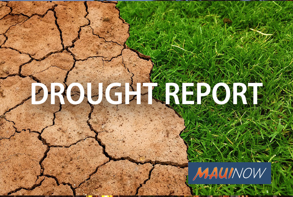 Drought Conditions Tax Upcountry Water Resources