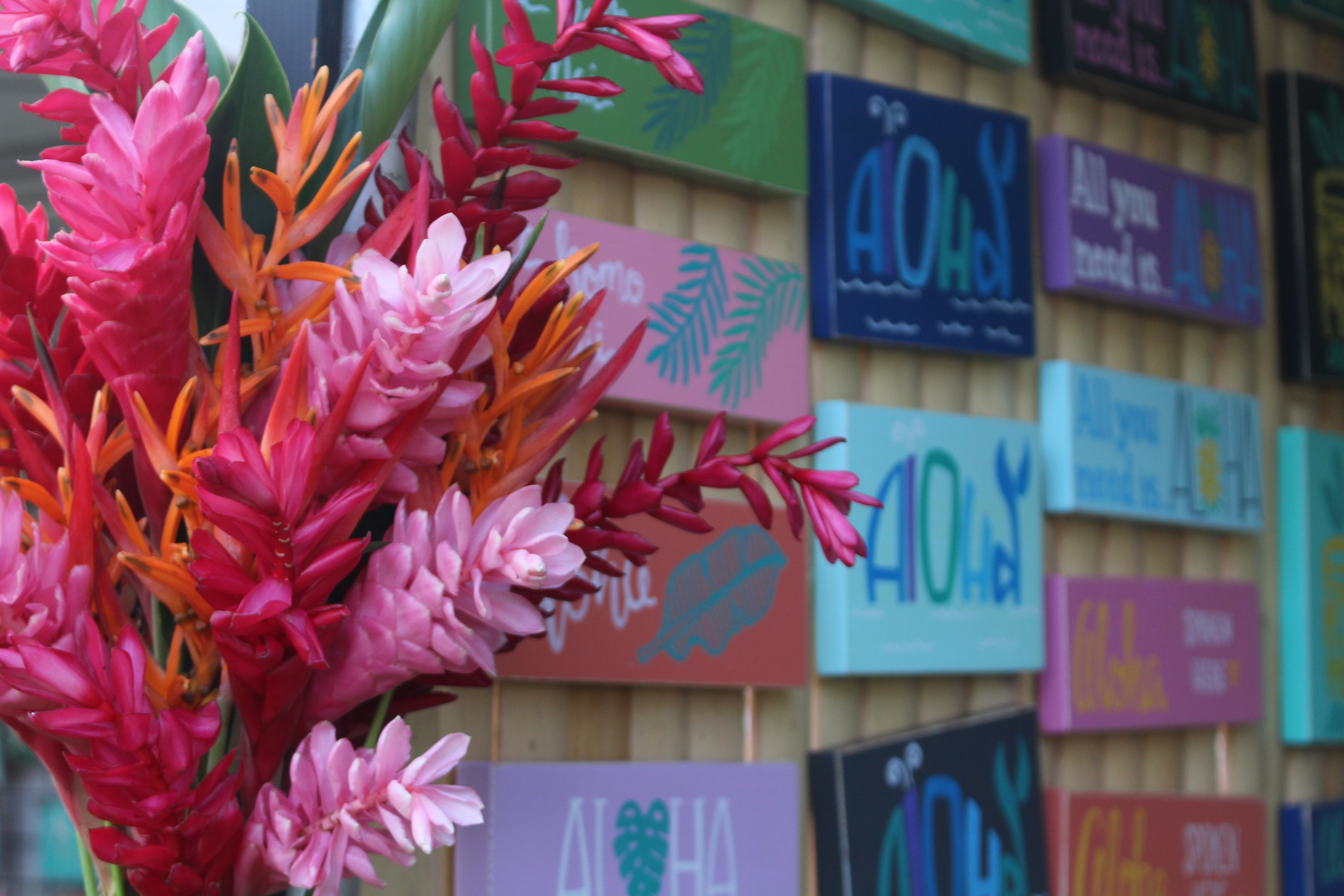 Vendor Sought for 8th Annual Hawaiian Airlines Made in Maui County Festival