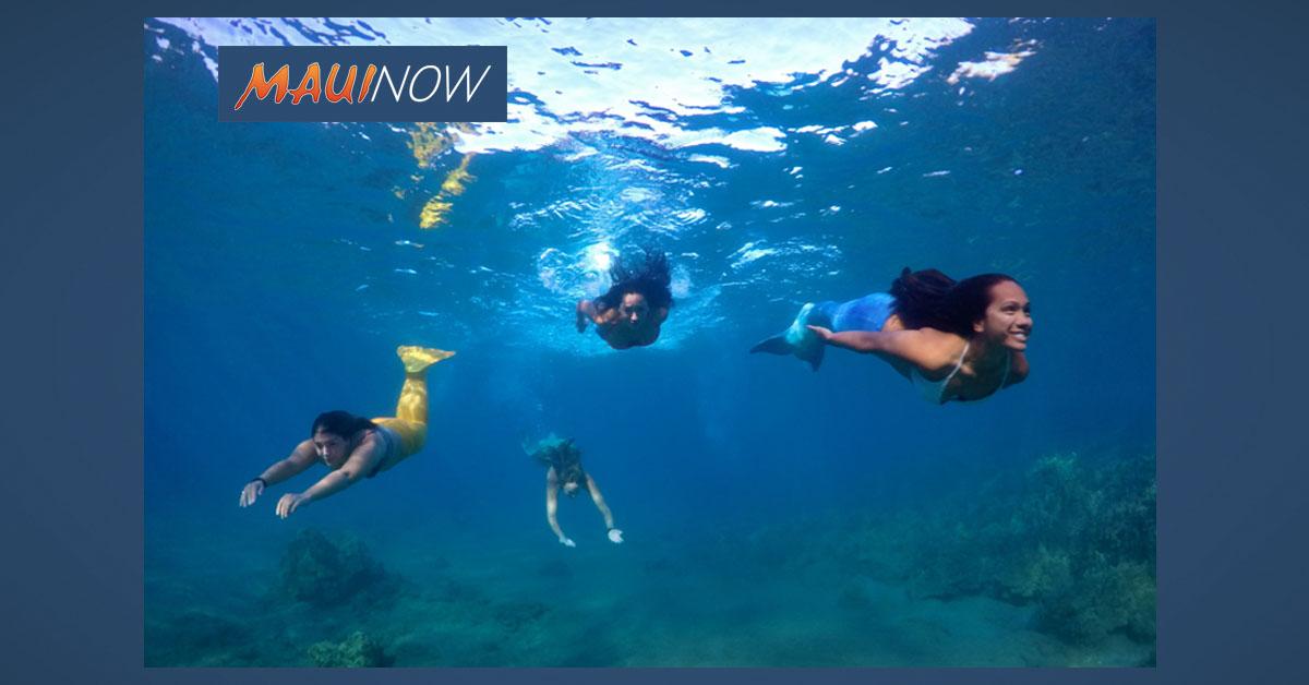 Maui Businesses Win Big at Hawai'i Ecotourism Awards
