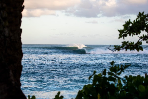 Day 2 of Vans World Cup Called ON