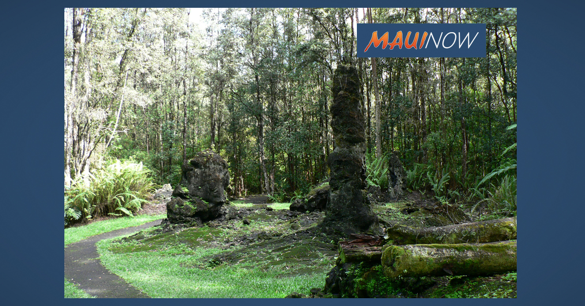 Lava Tree State Monument Reopens After 7 Months
