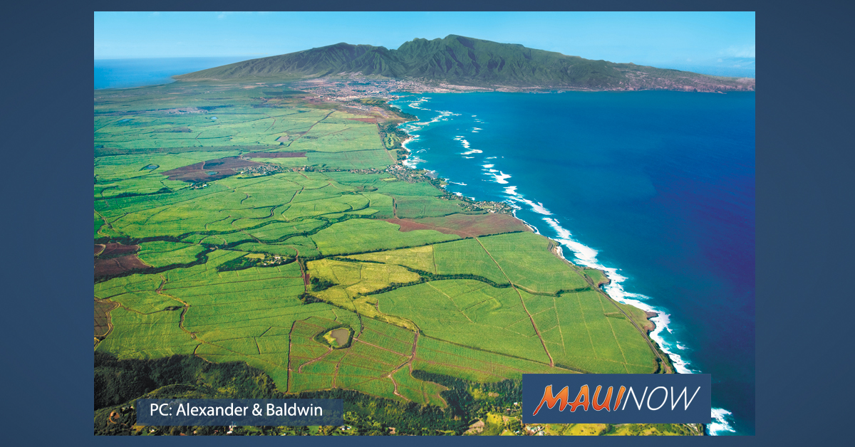 Mahi Pono Announces Maui Crop Plan for 2000 Acres