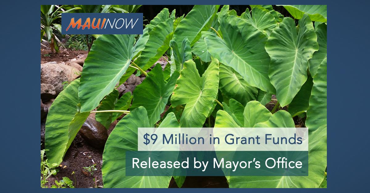 $9 M in Grants Released by Maui Mayor's Office