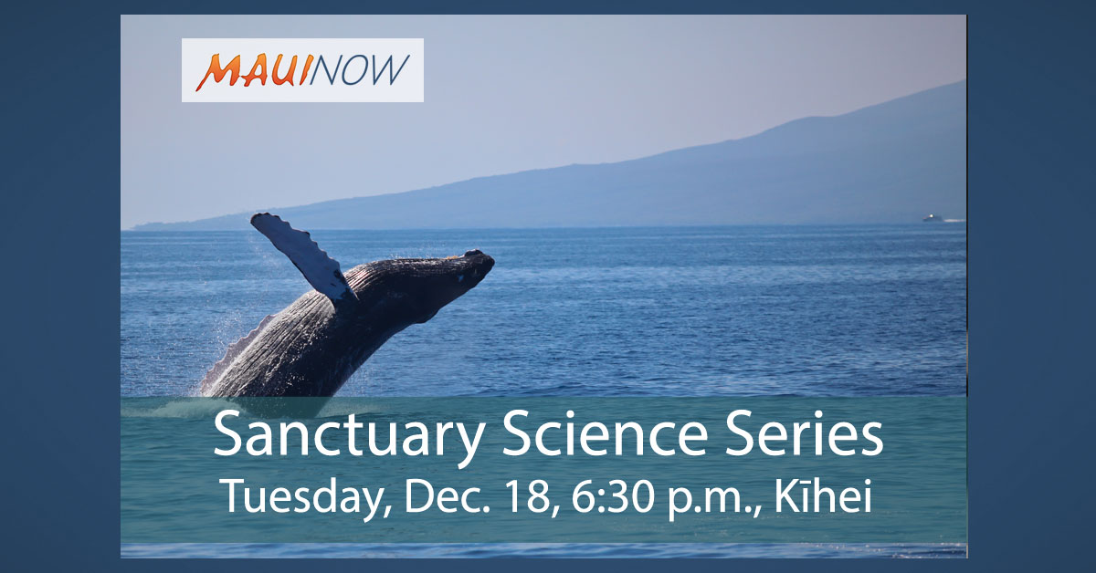 Free Public Lecture on Pacific Humpback Whales, Dec. 18