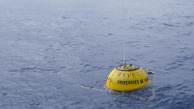 UH Mānoa Receives $1.3 Million for Marine Energy Project