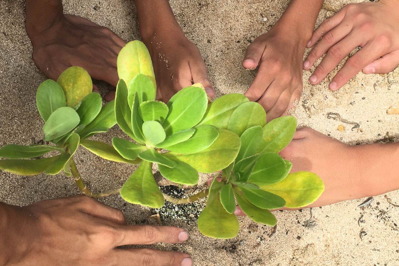 Paid Conservation Leadership Program Seeks Candidates