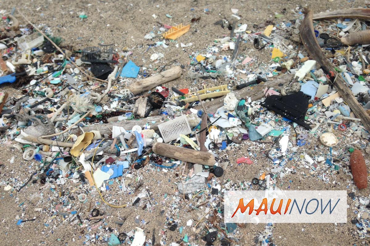 Canadian Students Help Combat Hawai'i's Microplastics Problem