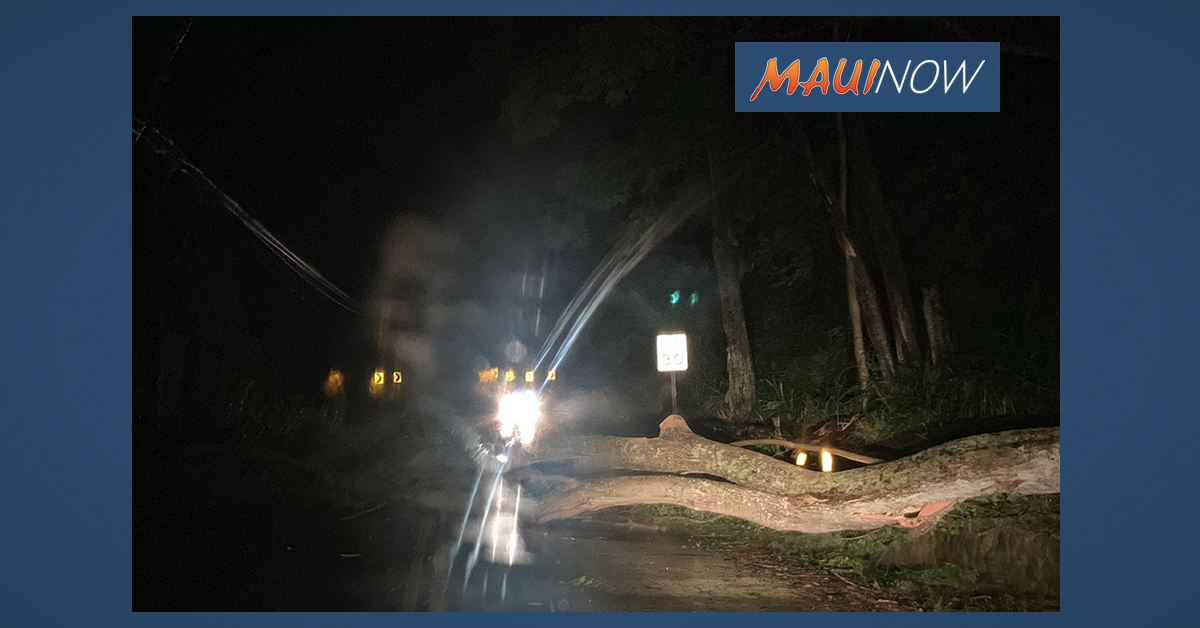 Winter Storm Damage Assessment Underway on Maui