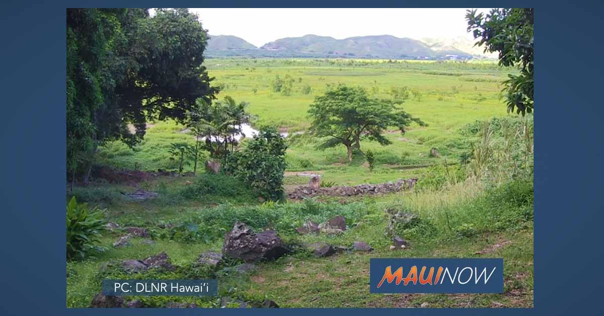 Hawai'i Celebrates World Wetlands Day