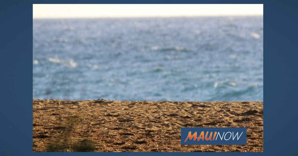 Three Rescued from West Maui Waters