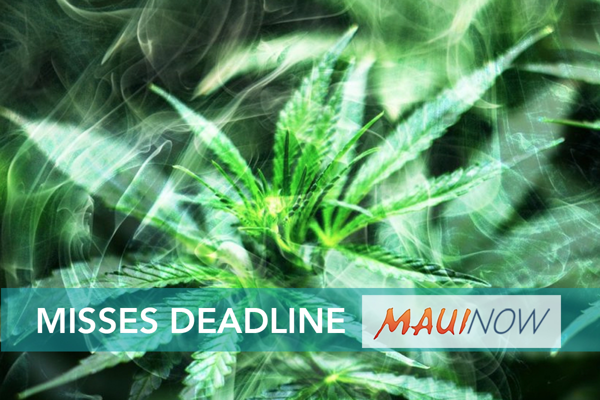 Legislative Committees Overlook Hawai'i Cannabis Bill