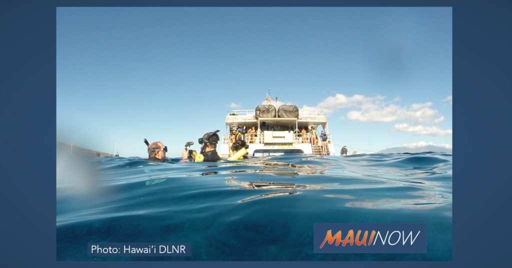 Maui Now: Customer Service and Professional Tour Guide Certifications Offered on Maui