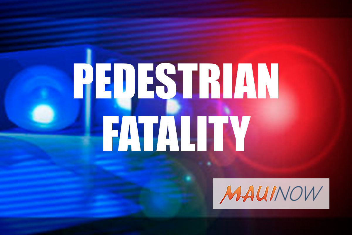Pedestrian Dies After Being Struck by 2 Vehicles