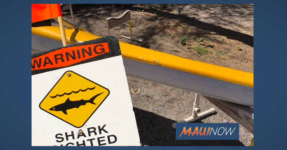 Paddler Reports Apparent Shark Bite off Big Island
