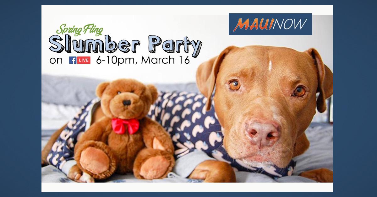 Maui Humane Society Hosts Spring Slumber Party