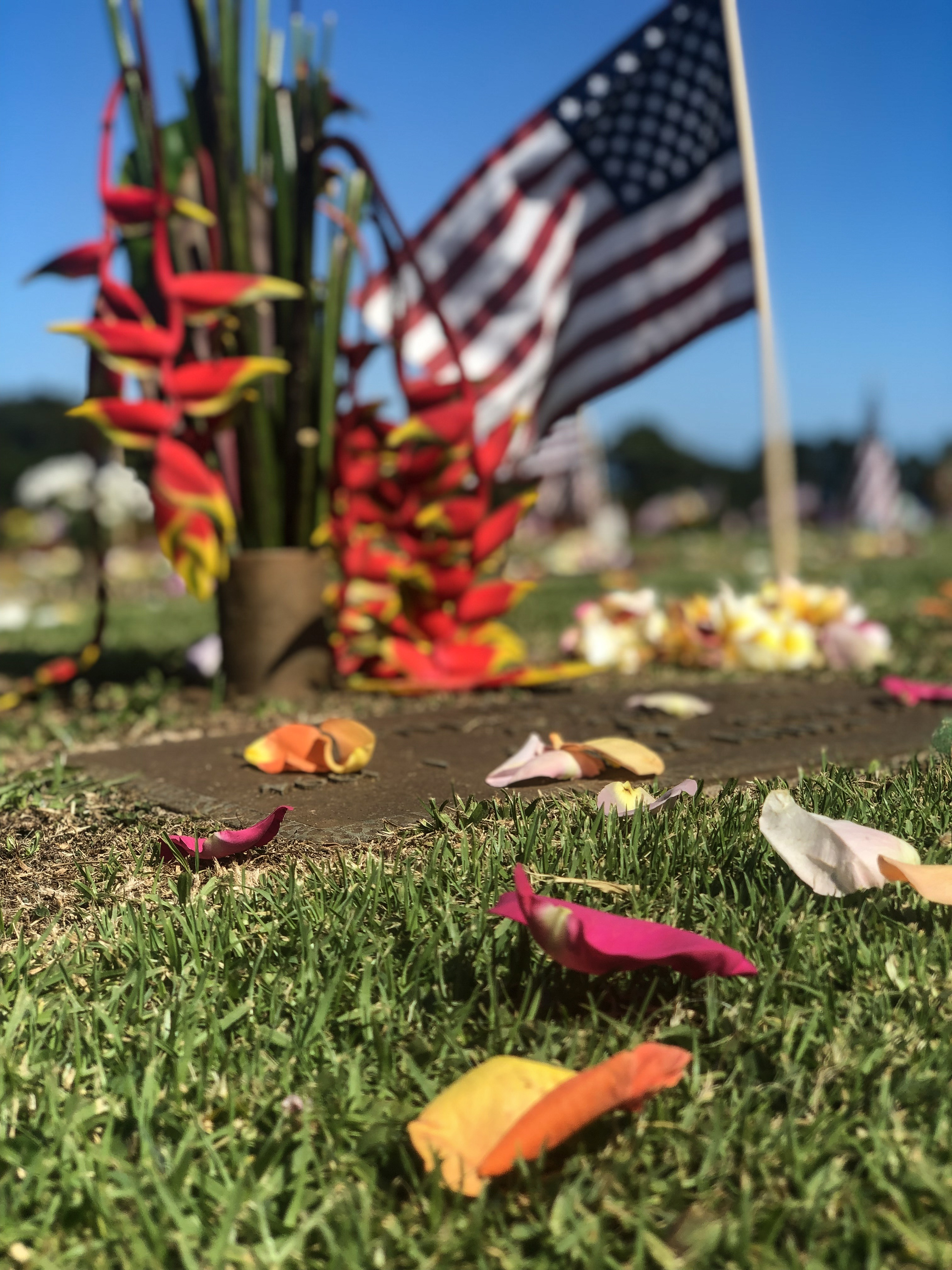 10,000 Rose Petals Dropped Over Makawao in Memorial Day Tribute