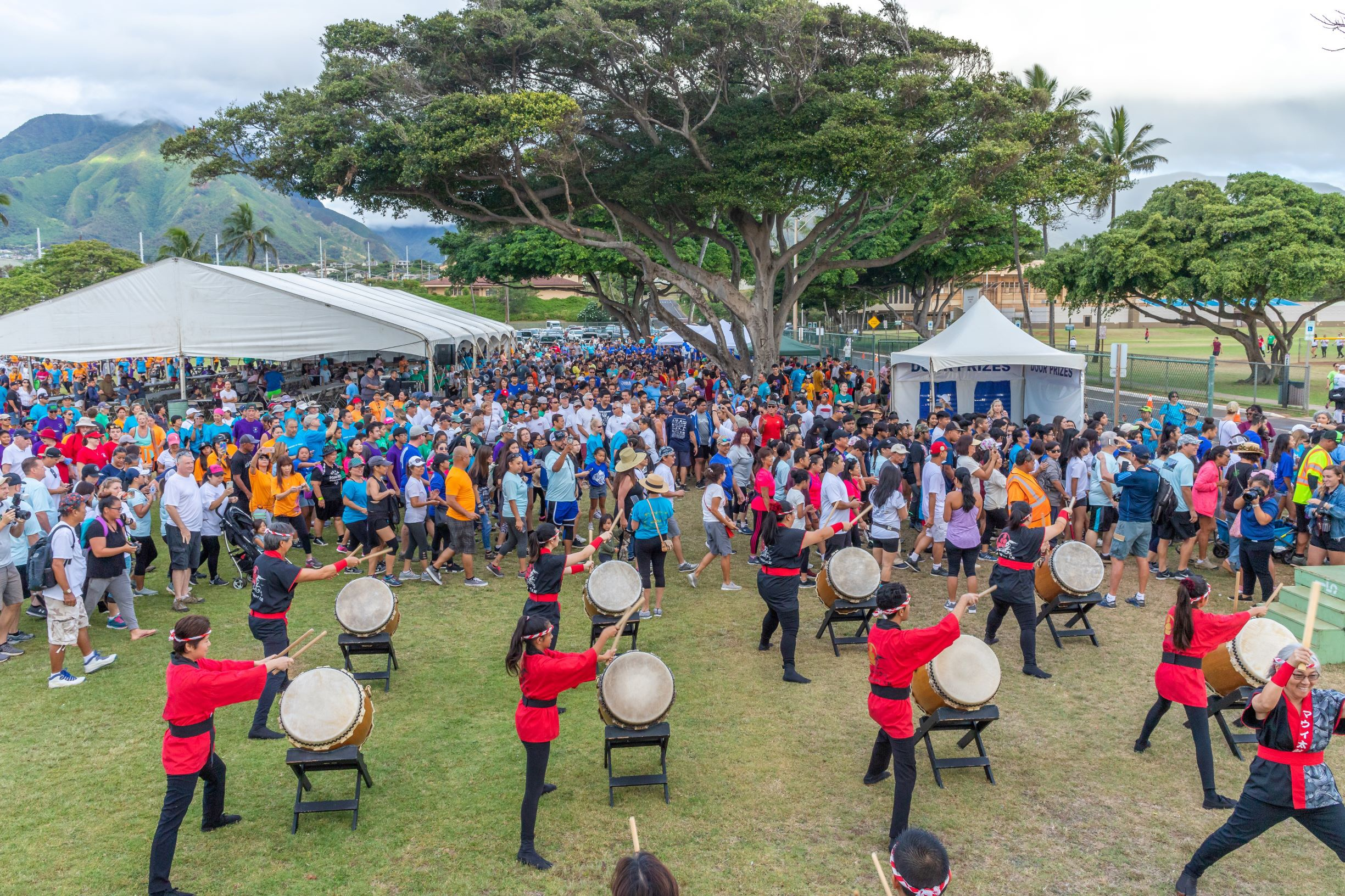 Maui County Charity Walk Raises $1.2 Million