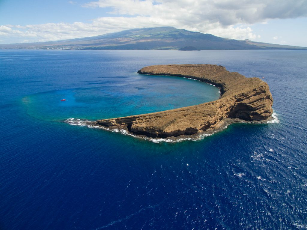 Maui Now: Molokini Crater Tour on National Ranking Lists