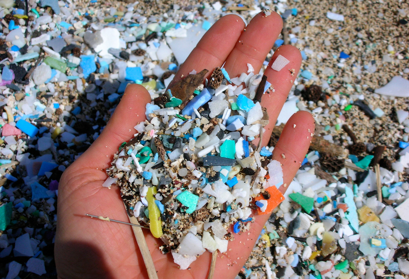 Bill to Boost International Response to Marine Debris Passes Senate
