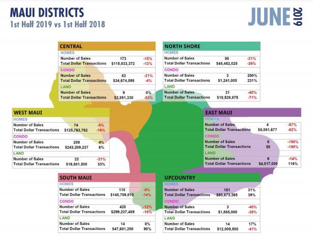 Half Year 2019 YTD Maui Statistics