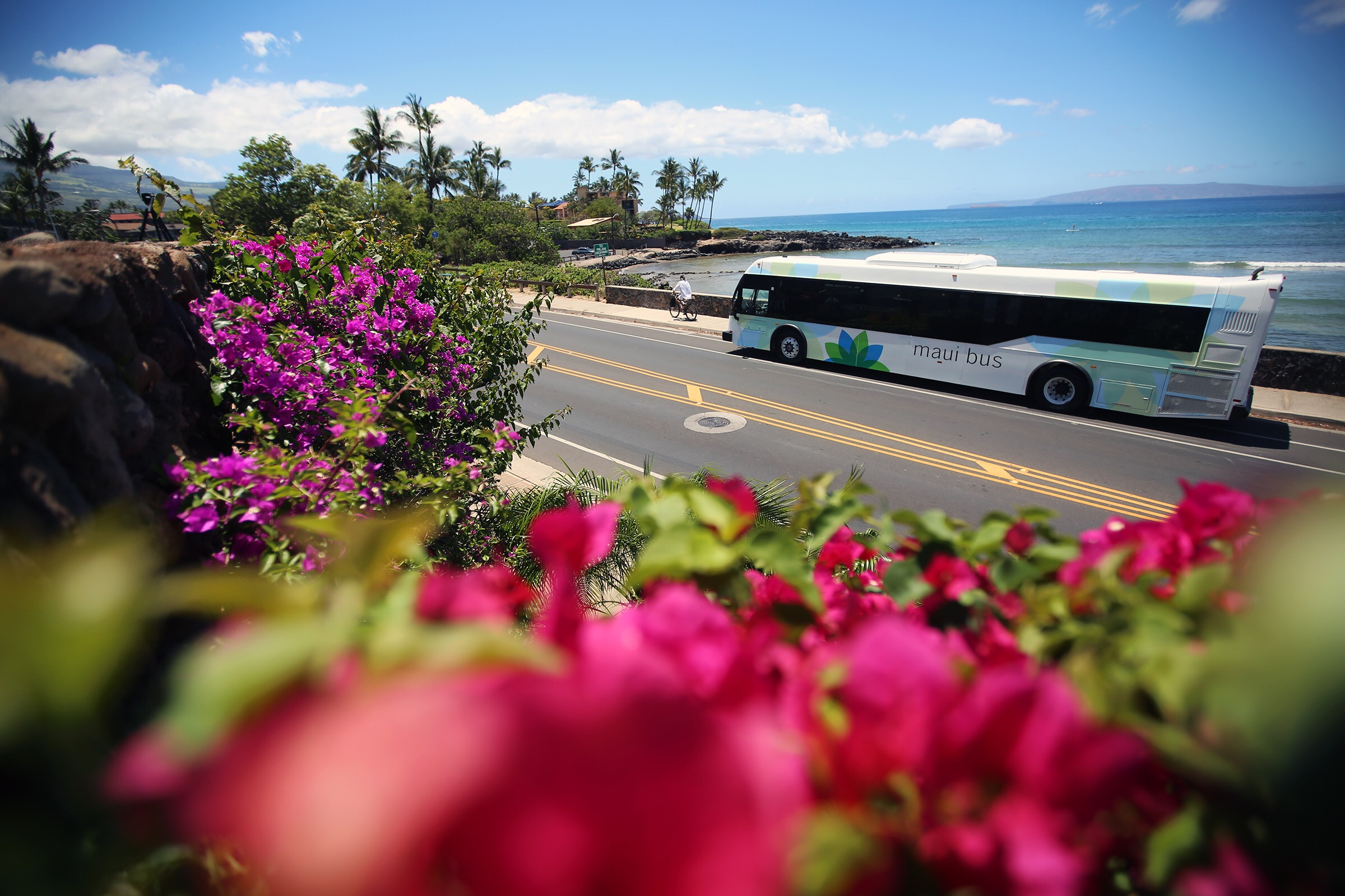 New Campaign Launched Encouraging Public to Ride the Maui Bus