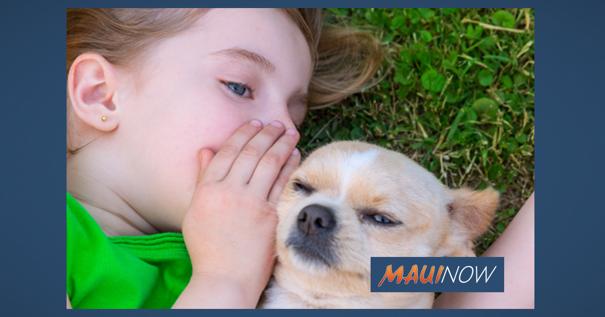 "Maui Humane Society ""Clear the Shelters Day"" Aug. 17"