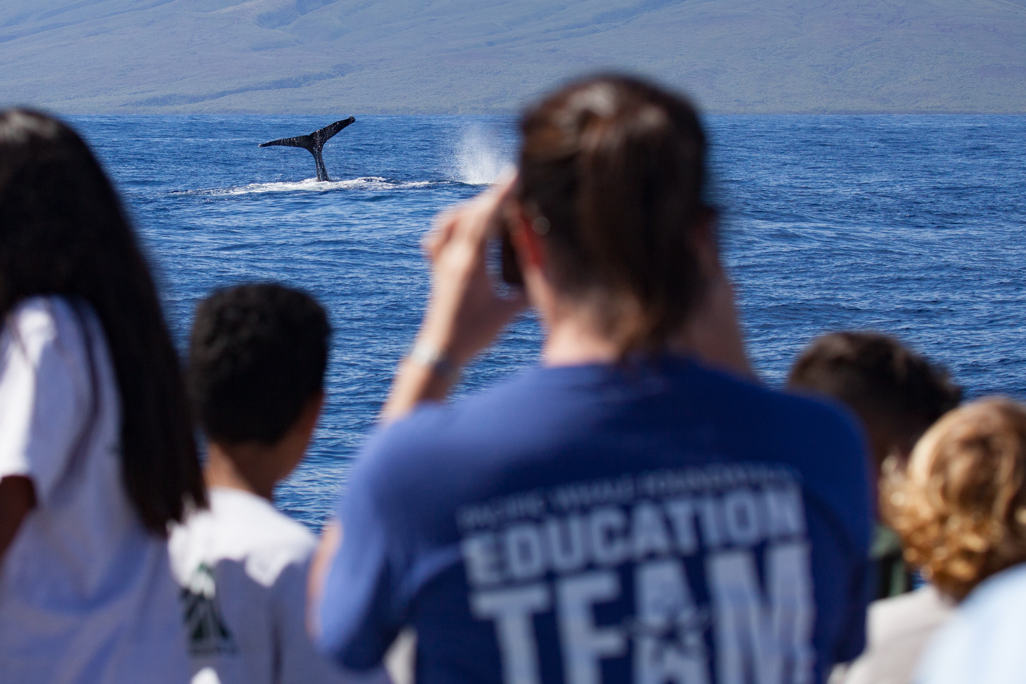 Whale-Sized Fun for Maui Children at Sea