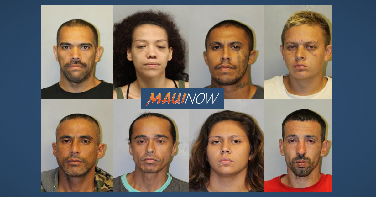 Task Force Aimed at Criminal Offenders in Hilo and Puna Results in Eight Arrests