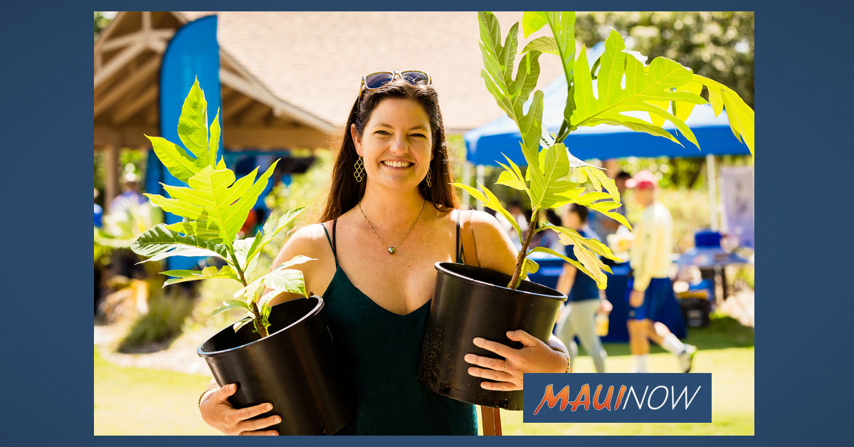 20 Maui County Events and Programs Awarded HTA Funding