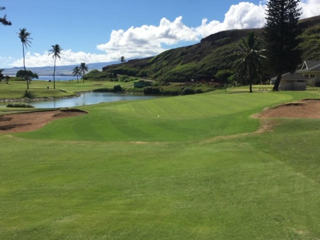 Waiehu Golf Course to Unveil Newly Renovated Greens
