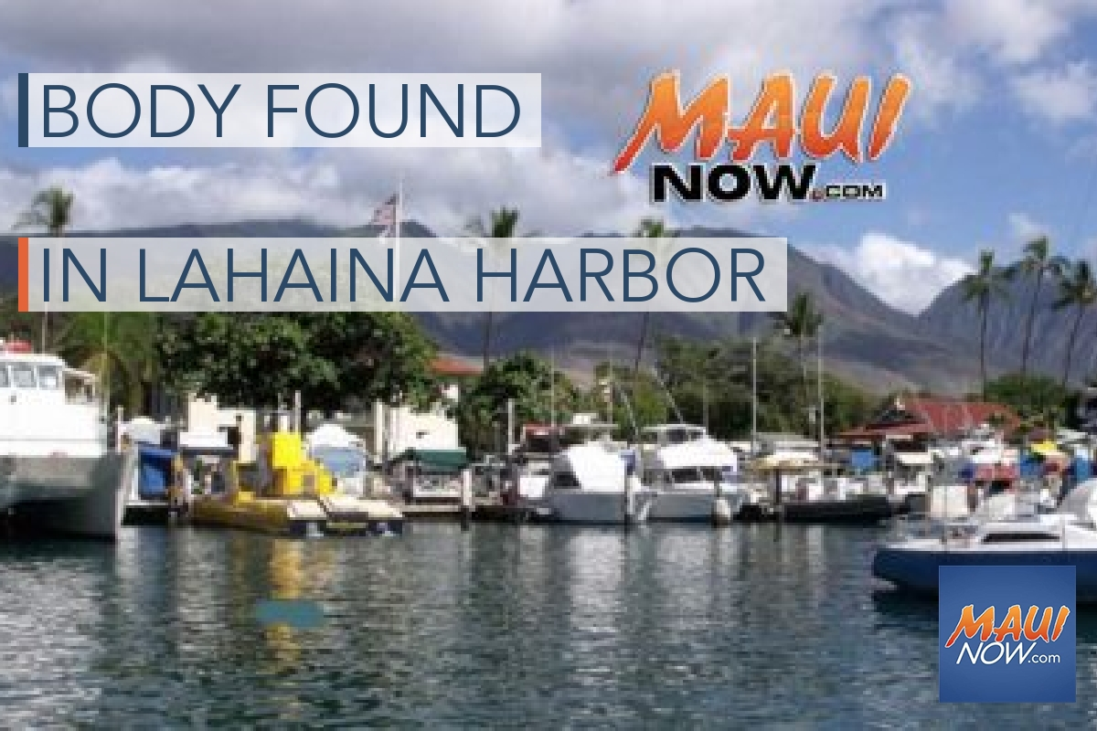 Maui Police Investigating Dead Body Found in Lahaina Harbor