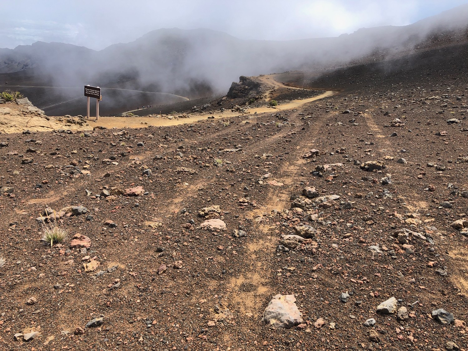 Off-road Vehicle Damages Silverswords and Trail at Haleakalā Summit