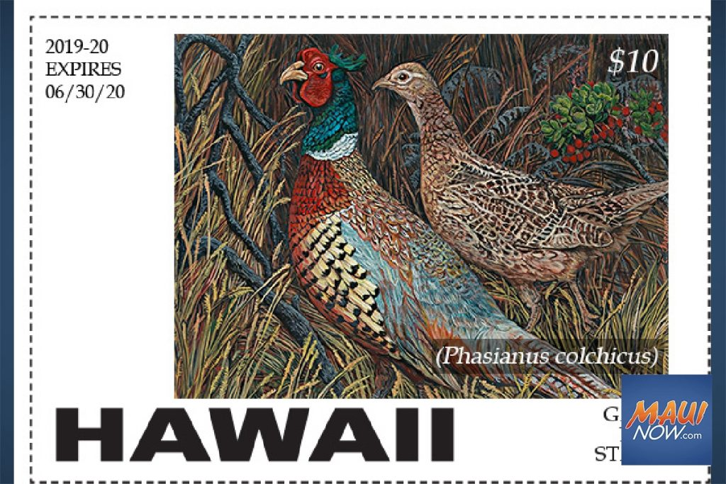 Maui Now: Wildlife Conservation Stamp Contest Seeking Entries