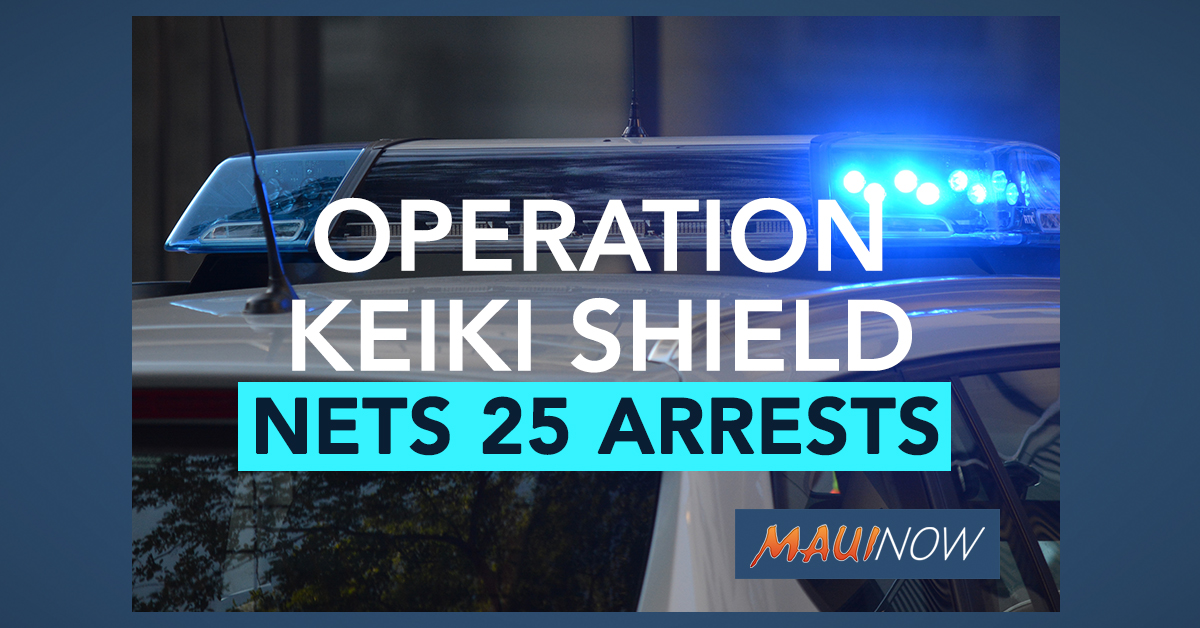 """Operation Keiki Shield"" Nets 25 Arrests of Suspected Sex Predators"