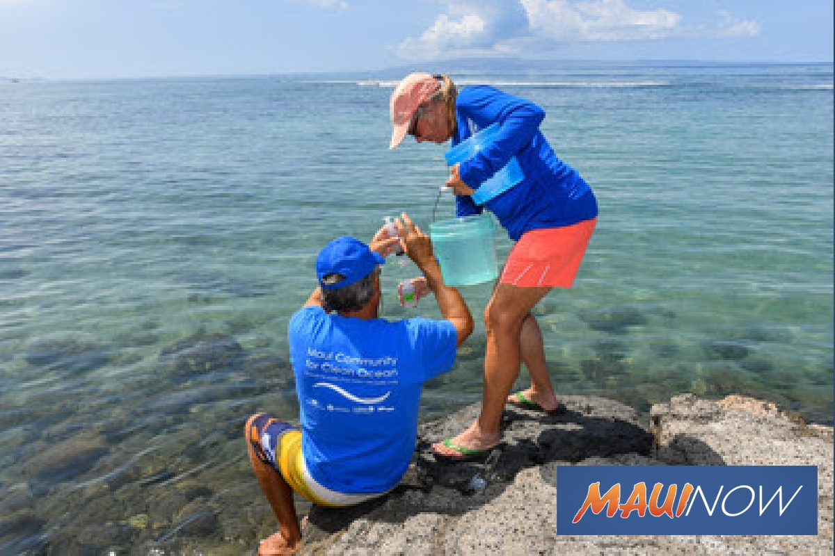 Volunteers Working For Cleaner Water Following Widespread Coral Bleaching