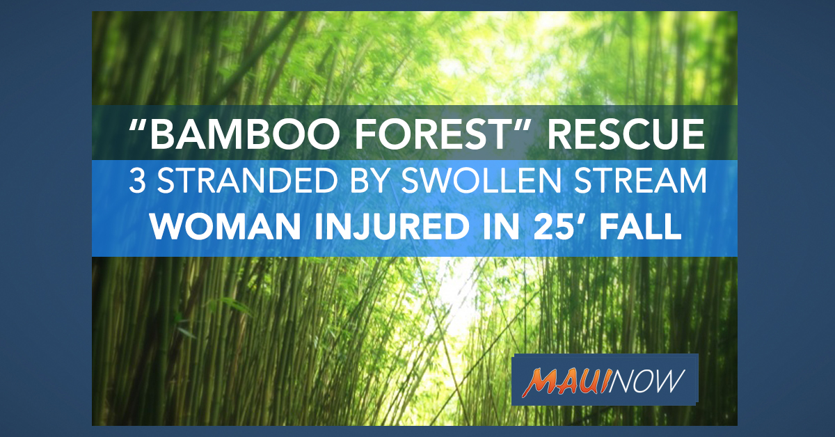 "California Woman Injured, Three Airlifted from ""Bamboo Forest"" in Kailua, Maui"