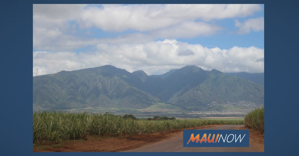 Maui Now: Gabbard's Bill Encourages Investment in Small Business, Local Agriculture