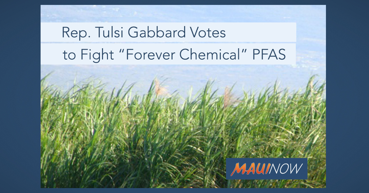 "Rep. Tulsi Gabbard Votes to Fight ""Forever Chemical"" PFAS Contamination"